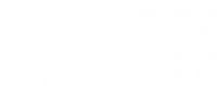 Microsoft Guldpartner